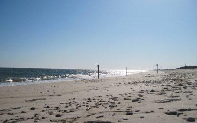 Winter Beach Walk in Rhode Island